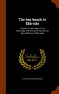 The Sea-beach At Ebb-tide: A Guide To The Study Of