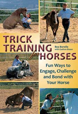 Trick Training for Horses: Fun Ways to Engage,