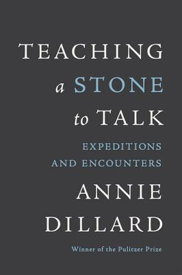Teaching a Stone to Talk: Expeditions and