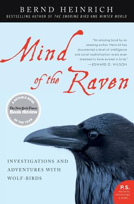 Mind of the Raven: Investigations and Adventures